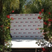 TRIO printed LG step & repeat