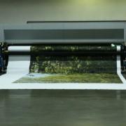 Printing Jeff Probst