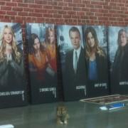TV Show Prints for MIP COM